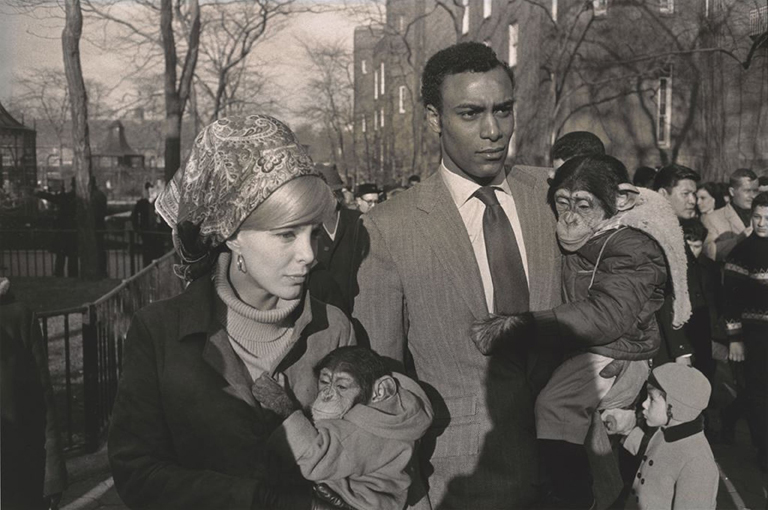 Garry Winogrand (American, 1928–1984) Central Park Zoo, New York 1967 Gelatin silver print Collection of Randi and Bob Fisher © The Estate of Garry Winogrand, courtesy Fraenkel Gallery, San Francisco