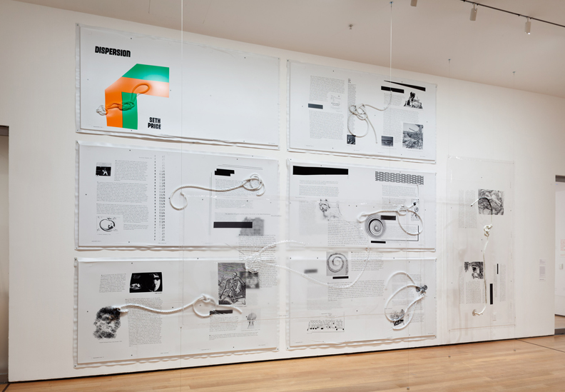 Installation view of Sites of Reason: A Selection of Recent Acquisitions, The Museum of Modern Art, June 11–September 28, 2014. © 2014 The Museum of Modern Art, New York. Photograph: Thomas Griesel