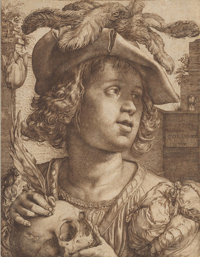 Goltzius, Hendrik, 1558-1617, Young Man Holding a Skull and a Tulip [drawing], 1614, 1 drawing, III, 145