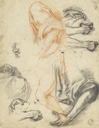 Andrea del Sarto (Italian, 1486 - 1530) Studies of Arms, Legs, Hands, and Drapery, about 1527 Red chalk and black chalk 25.8 x 20.2 cm (10 3/16 x 7 15/16 in.) Framed: 52.5 x 39.5 x 3 cm (20 11/16 x 15 9/16 x 1 3/16 in.) Istituti museale della Soprintendenza Speciale per Il Polo Museale Fiorentino