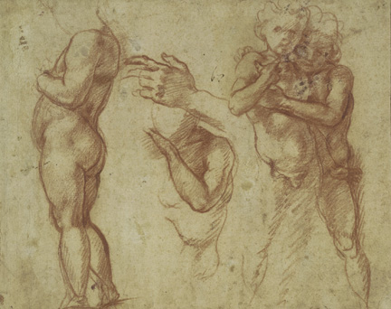 Andrea del Sarto (Italian, 1486 - 1530) Studies of Children, and of a Left Hand, 1520 - 1530 Red chalk 19.8 x 24.7 cm (7 13/16 x 9 3/4 in.) On Loan from the British Museum, T.11.63. Bequeathed by William Fawkener, 1769 Image © Trustees of the British Museum