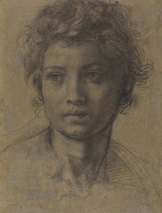 Andrea del Sarto (Italian, 1486 - 1530) Head of Saint John the Baptist, about 1523 Black chalk 33 x 23.1 cm (13 x 9 1/8 in.) Owner: National Gallery of Art (Washington, D.C.), 1991.182.14