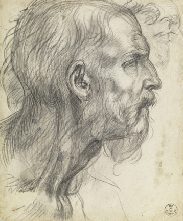 Andrea del Sarto (Italian, 1486 - 1530) Study of a Bearded Man in Profile, about 1526 - 1527 Black chalk 21.8 x 18.1 cm (8 9/16 x 7 1/8 in.) Framed: 52.5 x 39.5 x 3 cm (20 11/16 x 15 9/16 x 1 3/16 in.) Istituti museale della Soprintendenza Speciale per Il Polo Museale Fiorentino