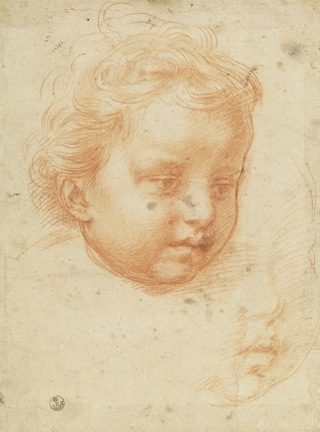 Andrea del Sarto (Italian, 1486 - 1530) Studies of the Head of an Infant, about 1528 Red chalk 24.8 x 18.4 cm (9 3/4 x 7 1/4 in.) Framed: 52.5 x 39.5 x 3 cm (20 11/16 x 15 9/16 x 1 3/16 in.) Istituti museale della Soprintendenza Speciale per Il Polo Museale Fiorentino