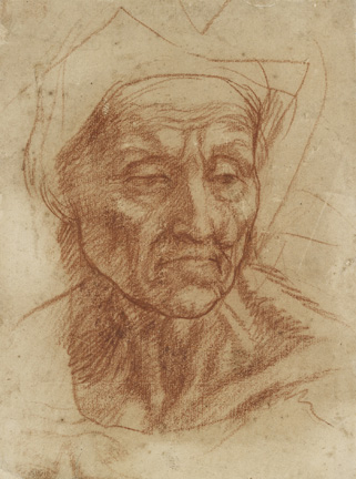 Andrea del Sarto (Italian, 1486 - 1530) Study of an Old Woman's Head, about 1529 Red chalk Unframed: 25 x 18.6 cm (9 13/16 x 7 5/16 in.) Framed: 60.4 x 45 x 2.4 cm (23 3/4 x 17 11/16 x 15/16 in.) The Ashmolean Museum, Oxford. Presented by a Body of Subscribers, 1846.