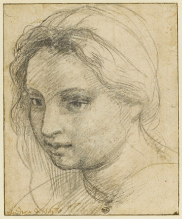 Andrea del Sarto (Italian, 1486 - 1530) Study of the Head of a Woman, about 1524 Black chalk 13.2 x 10.9 cm (5 3/16 x 4 5/16 in.) Owner: Musée du Louvre, 1716bis Image © RMN-Grand Palais / Art Resource, NY. Photo: Stephane Marechalle