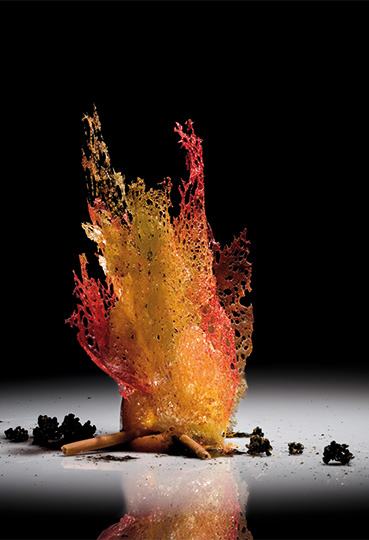 natura_fuego_b
