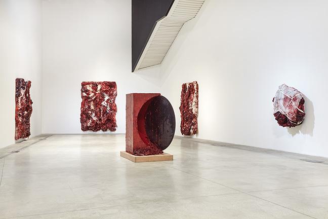 anish-kapoor_macro-museo-darte-contemporanea-roma-10