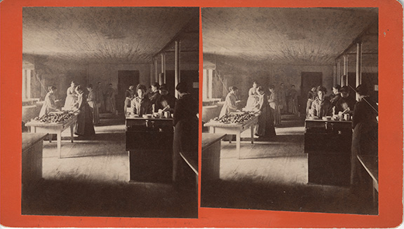 Stereoscope card showing an interior view of Mount Holyoke, Mount Holyoke College Archives and Special Collections, South Hadley, MA