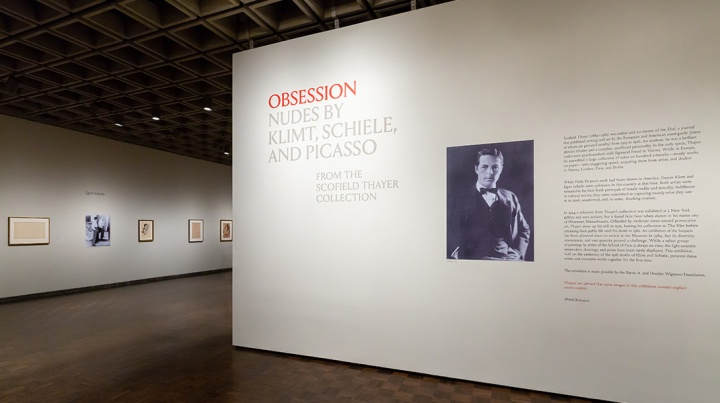 Image result for Obsession: Nudes by Klimt, Schiele, and Picasso