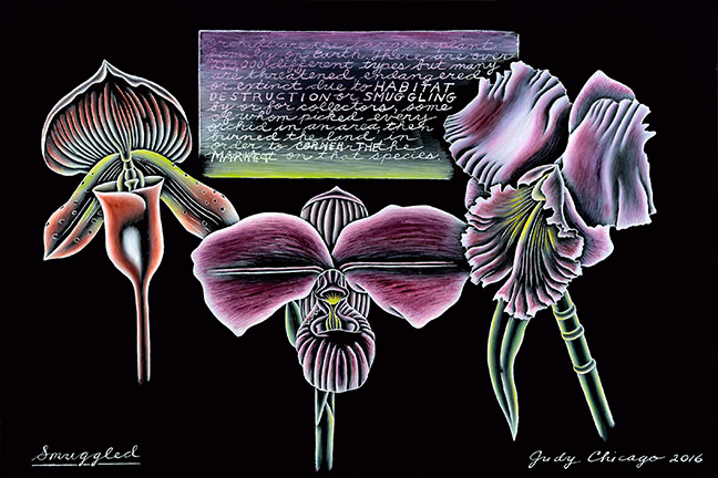 Judy Chicago - Smuggled_8x10 at 300 dpi jpg
