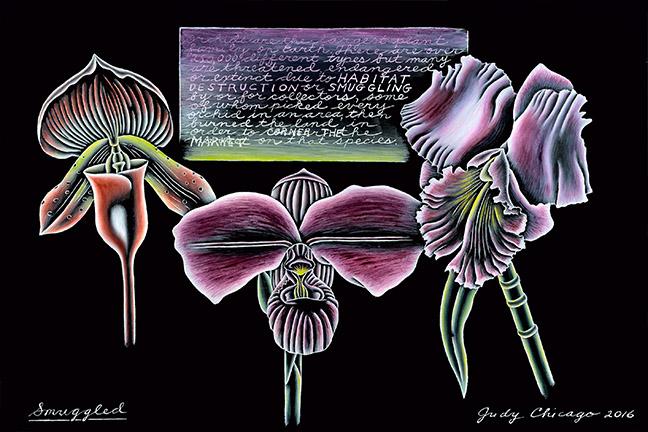 Judy Chicago - Smuggled_8x10 at 300 dpi jpg