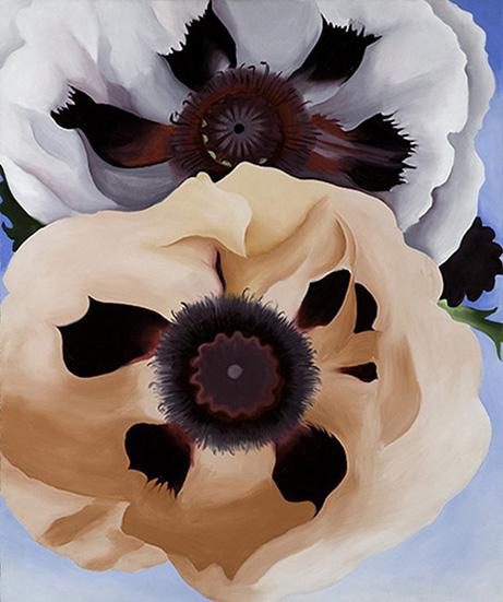 O'Keeffe Poppies