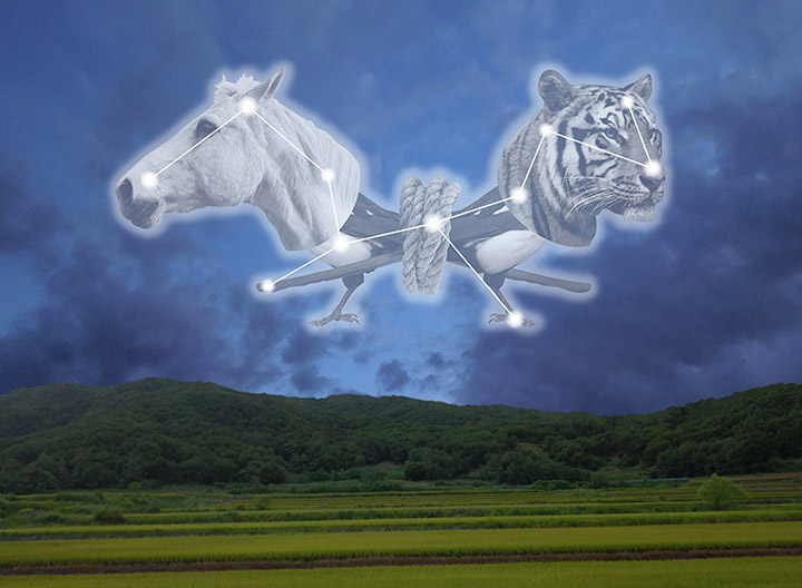 "Richard Humann ""The Tiger Horse"" Augmented Reality Variable Dimensions 2018 Installed over the Demilitarized Zone (DMZ) between North and South Korea"