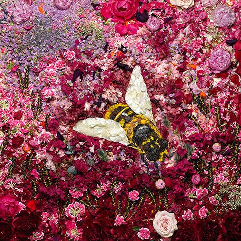Vik Muniz - Bee, 2016 ©Vik Muniz
