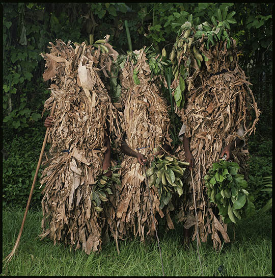Banana Leaf Masquerade by Phyllis Galembo