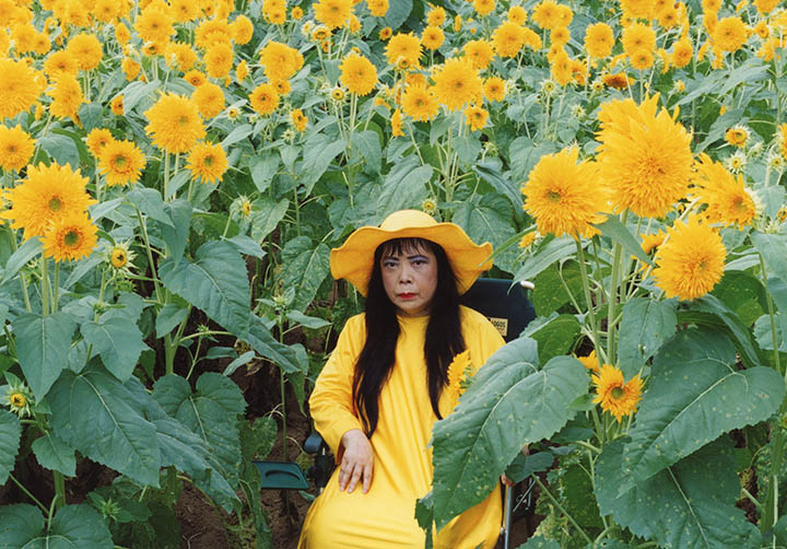 sunflower_kusama_2000_high